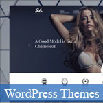 10 Awesome WordPress Themes for Professional Photographers, Fashion and Portfolio Websites 2017
