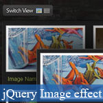 Picture Gallery with Display Switcher