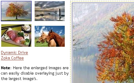 Dynamicdrive Css Imagegallery